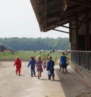 Bezoekboerderij boerderijeducatie koeien